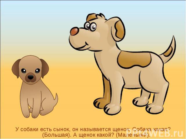 У собаки есть сынок, он называется щенок. Собака какая? (Большая). А щенок какой? (Маленький).