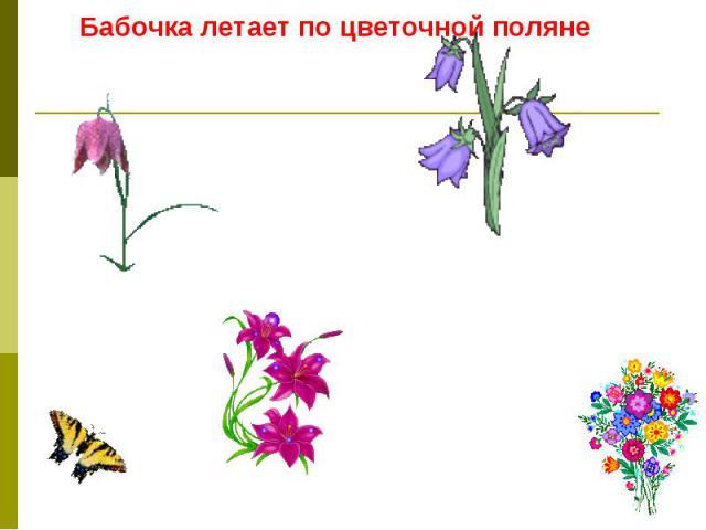 Бабочка летает по цветочной поляне