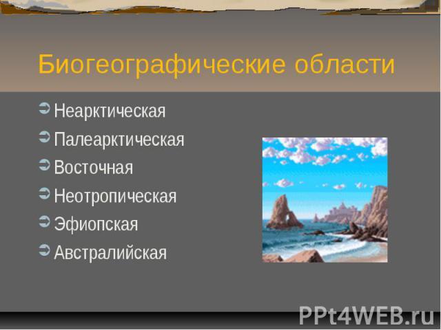 Биогеографические областиНеарктическаяПалеарктическаяВосточнаяНеотропическаяЭфиопскаяАвстралийская
