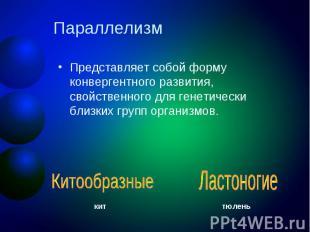 Параллелизм Представляет собой форму конвергентного развития, свойственного для