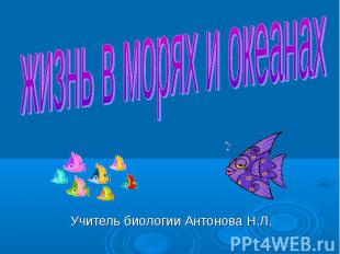 Учитель биологии Антонова Н.Л. жизнь в морях и океанах