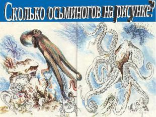 Сколько осьминогов на рисунке?