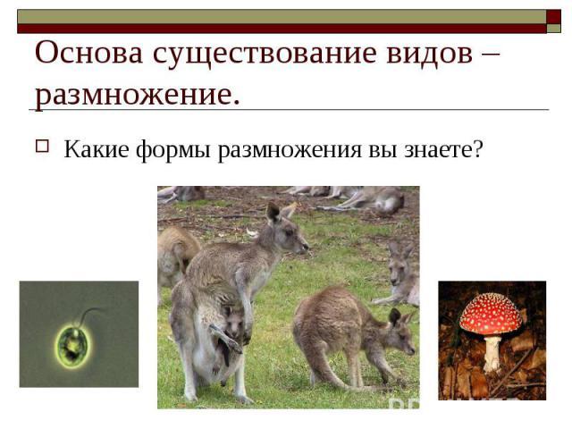 ?Какие формы размножения вы знаете? Основа существование видов – размножение.