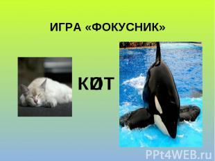 ИГРА «ФОКУСНИК» И К Т