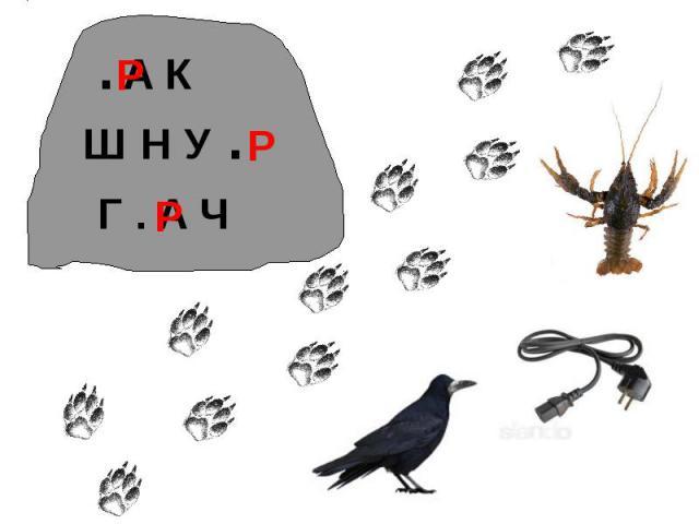 . А КШ Н У . Г . А Ч