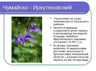 Чумайско - Иркутяновский Расположен на стыке Чебулинского и Тисульского районов.