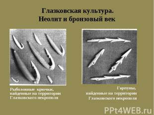 Глазковская культура. Неолит и бронзовый век Рыболовные крючки, найденные на тер