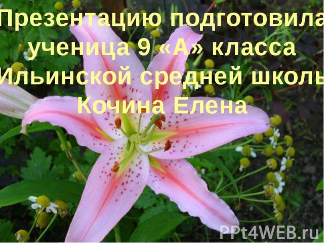 Презентацию подготовилаученица 9 «А» класса Ильинской средней школыКочина Елена