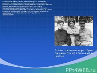Его сын Василий, офицер советских военно-воздушных сил, на командных должностях