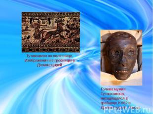 Тутанхамон на колеснице. Изображение из гробницы в Долине царей Голова мумии Тут