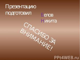 Презентацию подготовил Белов Никита СПАСИБО ЗА ВНИМАНИЕ!