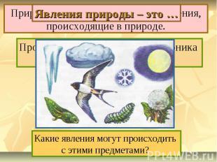 Явления природы – это … Природные явления – это все изменения, происходящие в пр