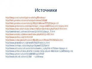 http://blogs.mail.ru/mail/galina-alik/tag/Плейкастhttp://fotki.yandex.ru/users/n