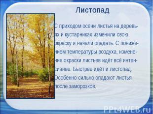 Листопад С приходом осени листья на деревь-ях и кустарниках изменили свою окраск