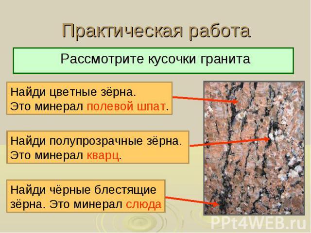 Практическая работа Рассмотрите кусочки гранита Найди цветные зёрна. Это минерал полевой шпат. Найди полупрозрачные зёрна. Это минерал кварц. Найди чёрные блестящие зёрна. Это минерал слюда