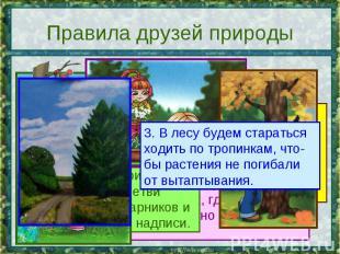 Правила друзей природы 3. В лесу будем стараться ходить по тропинкам, что-бы рас
