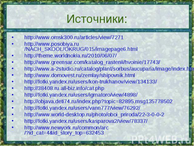 Источники: http://www.omsk300.ru/articles/view/7271http://www.posobiya.ru/NACH_SKOOL/OKRUG/015/imagepage6.htmlhttp://theme.worldnokia.ru/2010/06/07/http://www.greensar.com/katalog_rastenii/hvoinie/17743/http://www.a-2studio.ru/catalog/plant/sorbus/a…