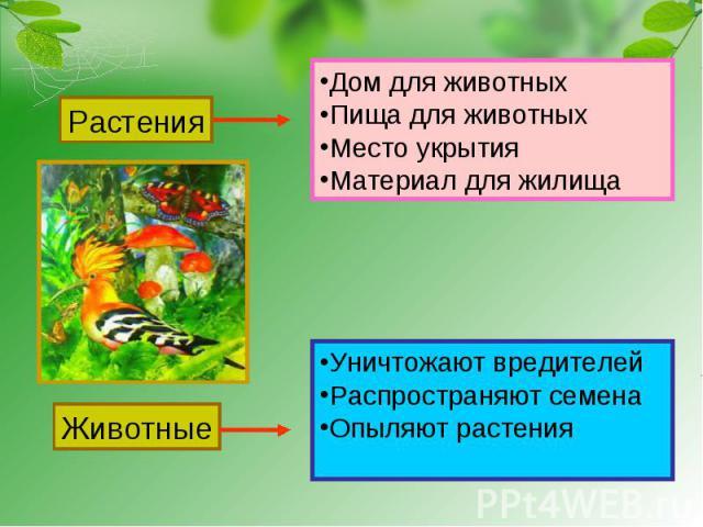 Растения Дом для животныхПища для животныхМесто укрытияМатериал для жилища Животные Уничтожают вредителейРаспространяют семенаОпыляют растения