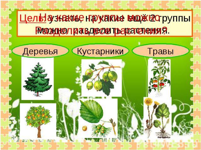 На какие группы можно Разделить все растения? Цель: узнать, на какие ещё 2 группыможно разделить растения.