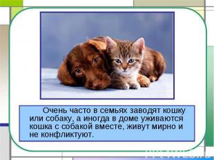 Очень часто в семьях заводят кошку или собаку, а иногда в доме уживаются кошка с