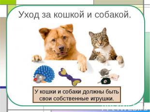Уход за кошкой и собакой. У кошки и собаки должны бытьсвои собственные игрушки.