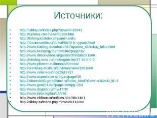 http://allday.ru/index.php?newsid=82941 http://turistua.com/news/10206.htmhttp:/