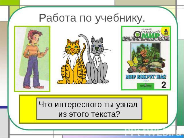 Работа по учебнику.Прочитай текст «Кошки» в учебнике на стр.80. Что интересного ты узнал из этого текста?