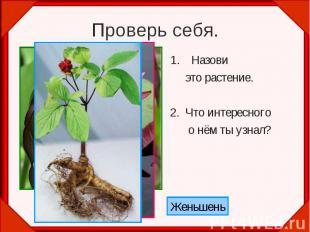 Проверь себя.Назови это растение.2. Что интересного о нём ты узнал?