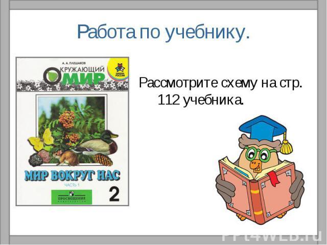 Работа по учебнику.Рассмотрите схему на стр. 112 учебника.