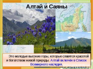 Алтай и Саяны Это молодые высокие горы, которые славятся красотой и богатством ж