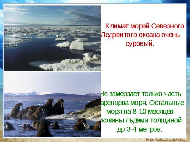 Климат морей Северного Ледовитого океана очень суровый. Не замерзает только часть Баренцева моря. Остальные моря на 8-10 месяцев скованы льдами толщиной до 3-4 метров.