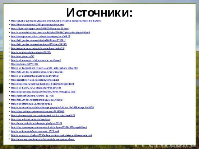 http://katyaburg.ru/razdely/krasota-prirody/tundra-zhivotnye-rasteniya-video-foto-kartinkihttp://funzoo.ru/glamour/2584-polyarnaya-sova.htmlhttp://vidyaevo.blogspot.com/2008/05/blog-post_10.htmlhttp://www.geolink-group.com/tourclub/trips/2003ks2/pho…