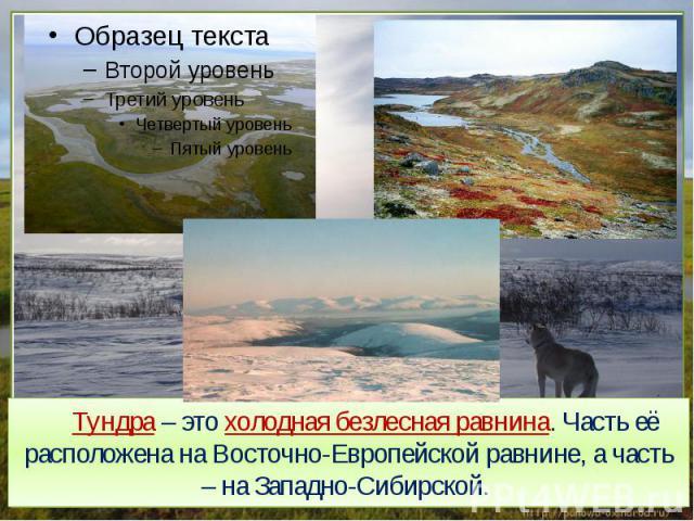 Тундра – это холодная безлесная равнина. Часть её расположена на Восточно-Европейской равнине, а часть – на Западно-Сибирской..