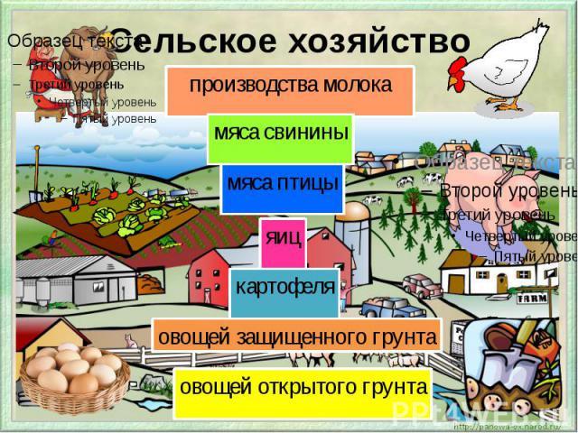Сельское хозяйство производства молока мяса птицы яиц картофеля овощей защищенного грунта овощей открытого грунта