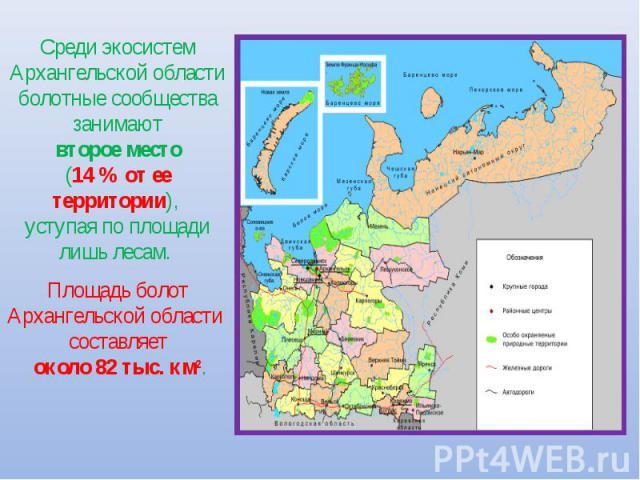 Среди экосистем Архангельской области болотные сообщества занимают второе место (14 % от ее территории), уступая по площади лишь лесам. Площадь болот Архангельской области составляет около 82 тыс. км2.