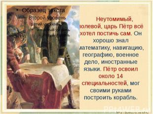 Неутомимый, волевой, царь Пётр всё хотел постичь сам. Он хорошо знал математику,
