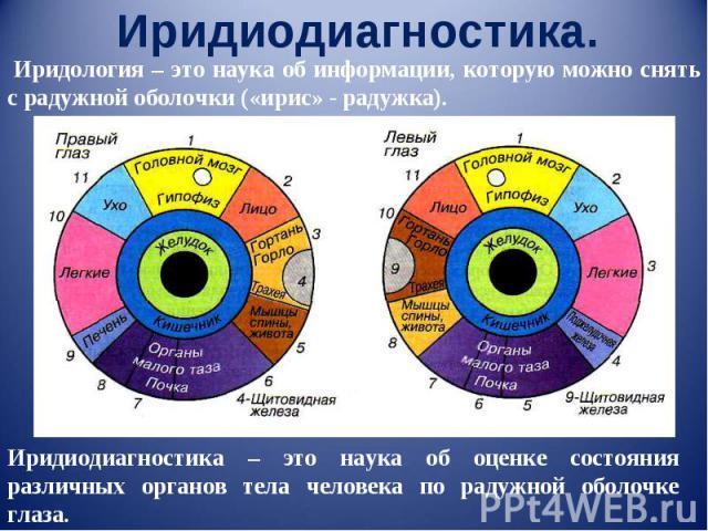 Иридиодиагностика. Иридология – это наука об информации, которую можно снять с радужной оболочки («ирис» - радужка). Иридиодиагностика – это наука об оценке состояния различных органов тела человека по радужной оболочке глаза.