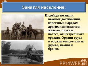 Занятия населения: Индейцы не знали важных достижений, известных народам других