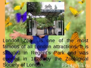 London Zoo is one of the most famous of all London attractions. It is situated i