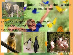 London Zoo is the world's oldest scientific zoo. The Zoo is open every day from