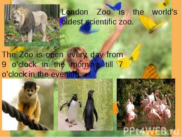London Zoo is the world's oldest scientific zoo. The Zoo is open every day from 9 o'clock in the morning till 7 o'clock in the evening.