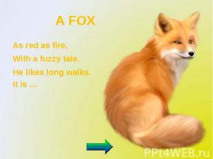 A FOX As red as fire, With a fuzzy tale. He likes long walks. It is …