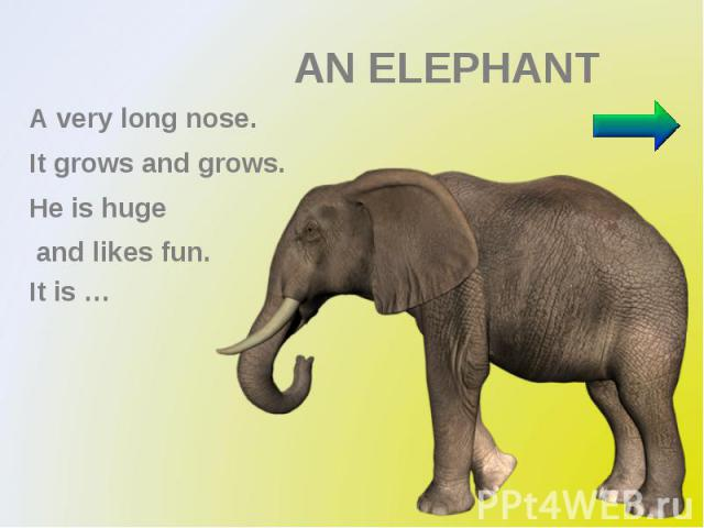 AN ELEPHANT A very long nose. It grows and grows. Не is huge and likes fun. It is …