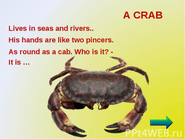 A CRAB Lives in seas and rivers.. His hands are like two pincers. As round as a cab. Who is it? - It is …