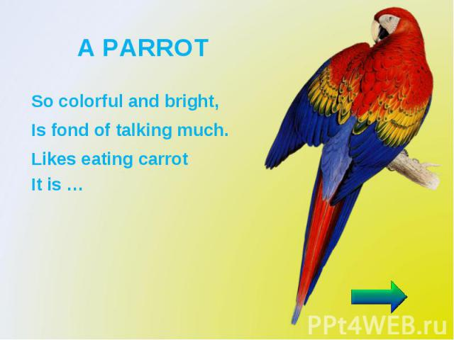 A PARROT So colorful and bright, Is fond of talking much. Likes eating carrot It is …