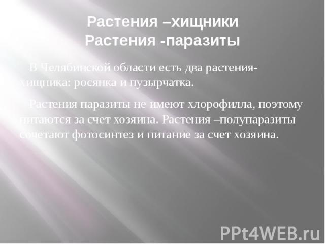 Растения –хищникиРастения -паразиты В Челябинской области есть два растения-хищника: росянка и пузырчатка. Растения паразиты не имеют хлорофилла, поэтому питаются за счет хозяина. Растения –полупаразиты сочетают фотосинтез и питание за счет хозяина.