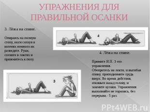 УПРАЖНЕНИЯ ДЛЯ ПРАВИЛЬНОЙ ОСАНКИ 3. Лёжа на спине.Опираясь на полную стопу, ног