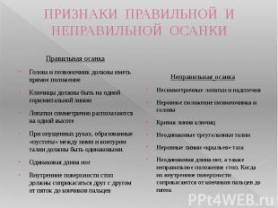 ПРИЗНАКИ ПРАВИЛЬНОЙ И НЕПРАВИЛЬНОЙ ОСАНКИ Правильная осанкаГолова и позвоночник