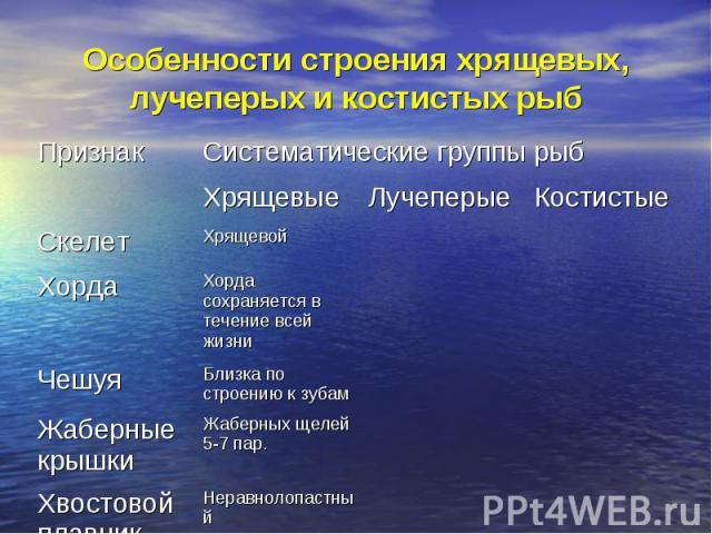 Особенности строения хрящевых, лучеперых и костистых рыб