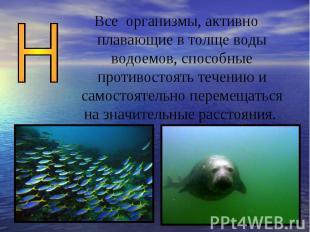 Все организмы, активно плавающие в толще воды водоемов, способные противостоять
